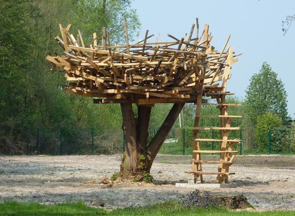 Dümmer Nest / 2011