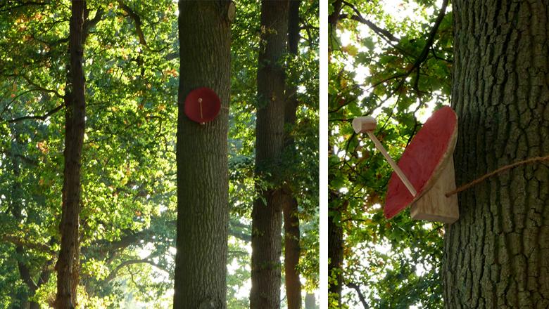 Treedishes / 2009